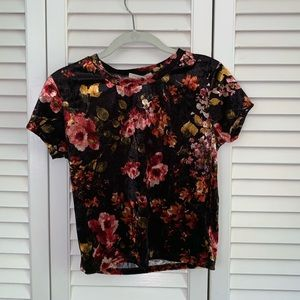 Urban Outfitters Velvet Cropped Floral T-Shirt